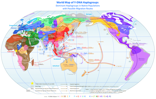 World_Map_of_Y-DNA_Haplogroups1