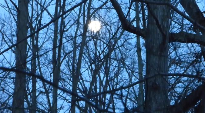 Copy of moon 1