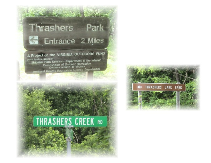 copy of thrasher's names