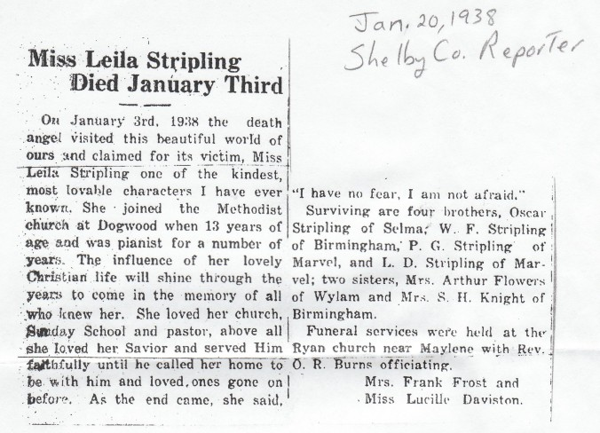 Copy of Stripling leila shelby co reporter