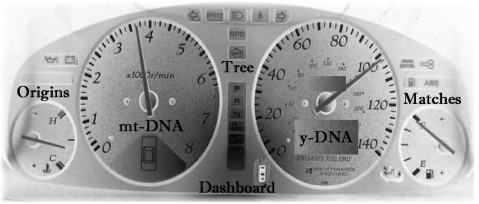 1 Copy of dashboard feature pic ftdna 2019 new